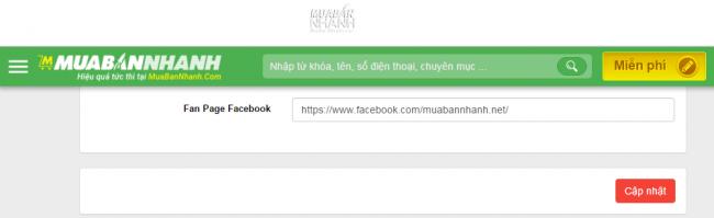 Nhập link facebook fanpage vào ô Fan Page Facebook