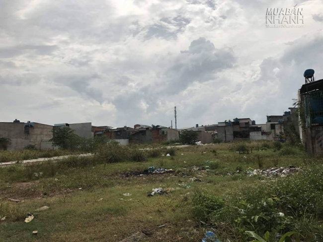 Hình ảnh đất nền, nhà ở quận Bình Tân - 3